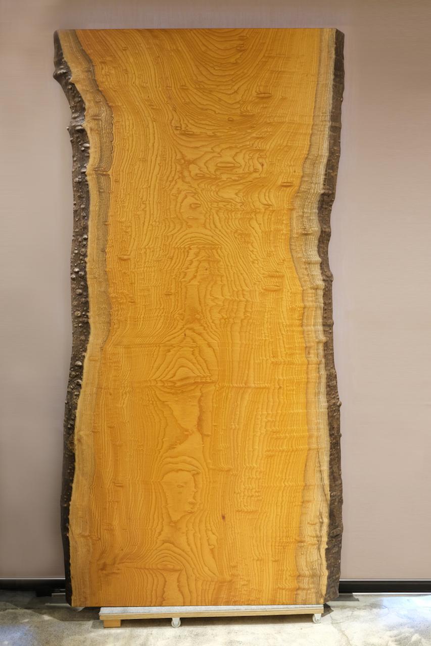 本欅(玉杢) 一枚板